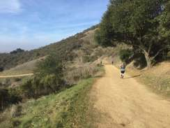 Lake Chabot New Years Day