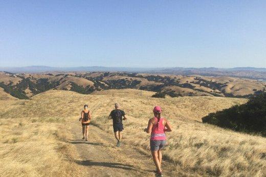 Oregon Coast 50k Training Recap