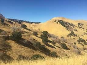Drag-n-fly Trail Half Marathon