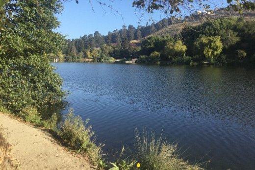 Oregon Coast 50k Training Recap Week 18