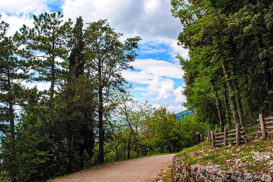 escursione-sul-monte-ingino-percorso