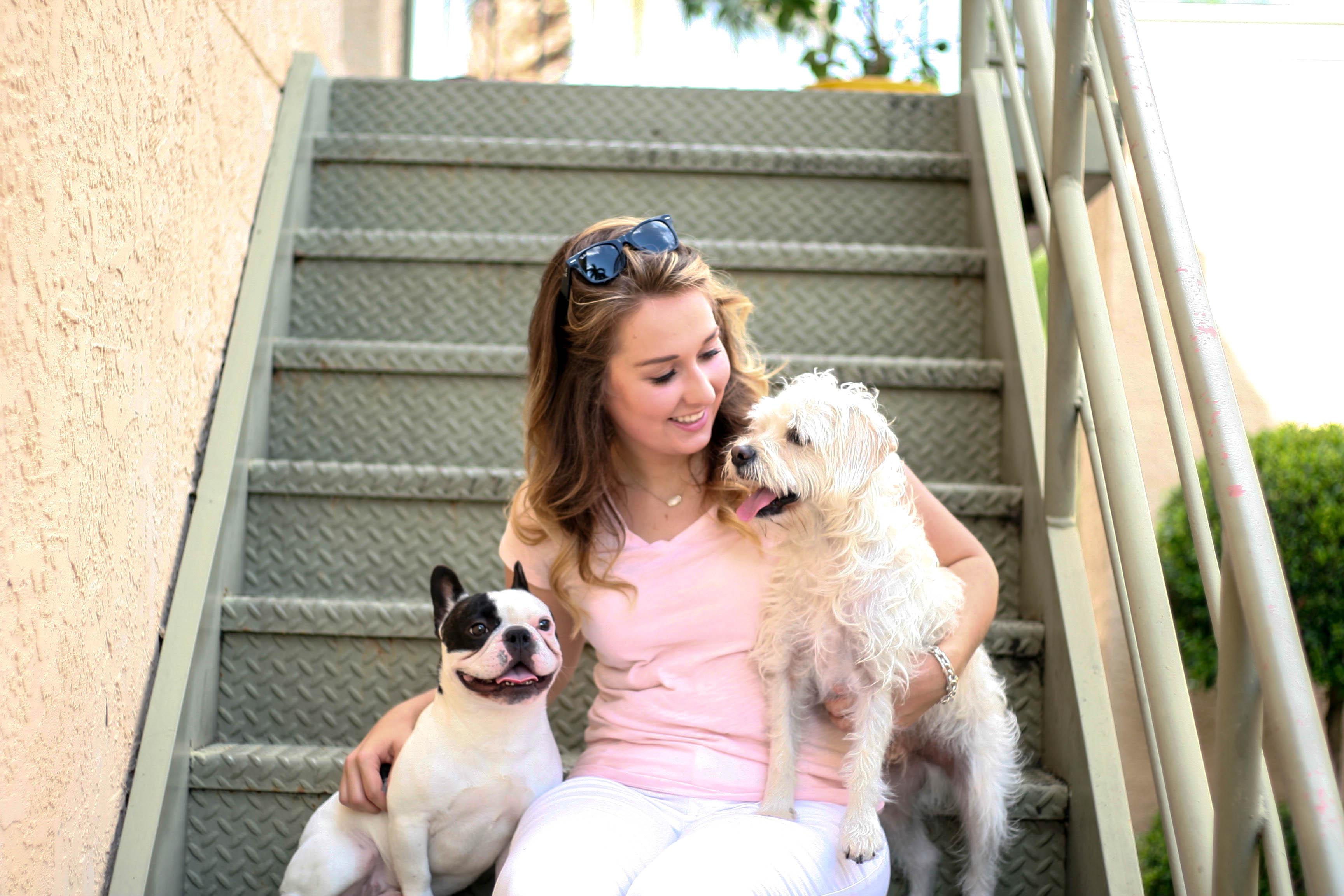 Sara Magnolia Blog - Dog Friendly Tampa