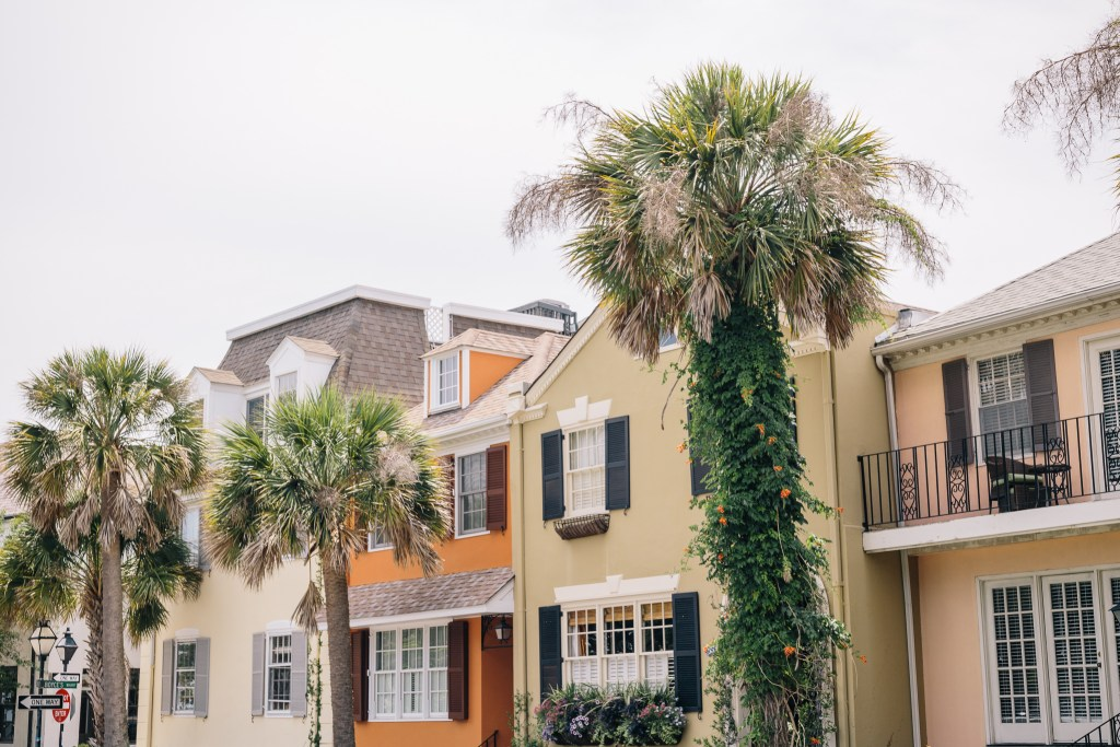 Sara Magnolia - Charleston, South Carolina