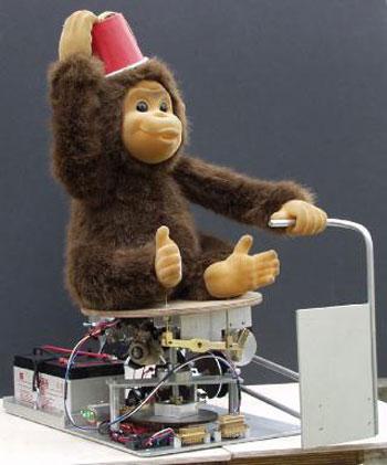 Sustalı Maymun