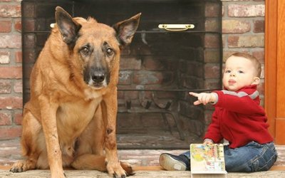 Your Dog Ate Your Homework … Again?