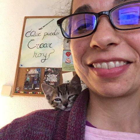 El verano pasado adoptamos a nuestro gatito Chipirón, de apenas mes y medio. Era tan pequeñín como un ratoncito y le gustaba dormirse en mi hombro mientras trabajaba.