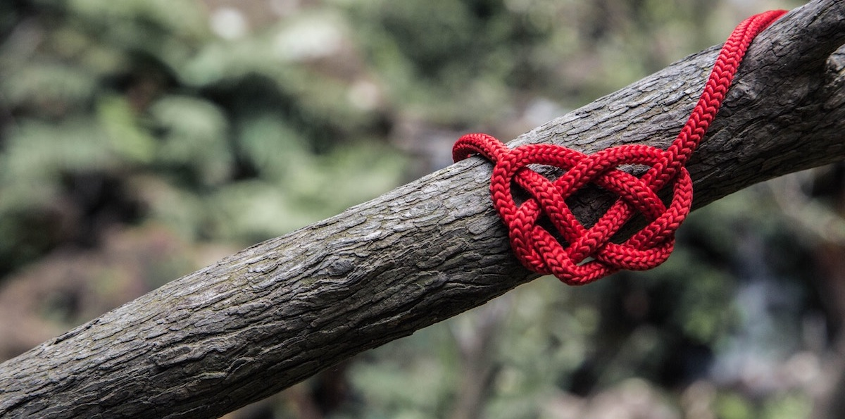 Love Knot - Meaning & Origin - Sara Verdier