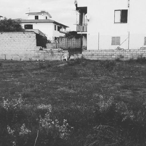 I disorientati (di Nardo Marino)