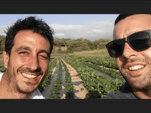 Carlo e Giulio, nuovi contadini in Costa Smeralda (di Francesco Giorgioni)