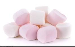 Marshmallow alla dopamina (di Rossella Dettori)