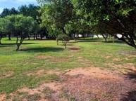 Il parco di Molentargius