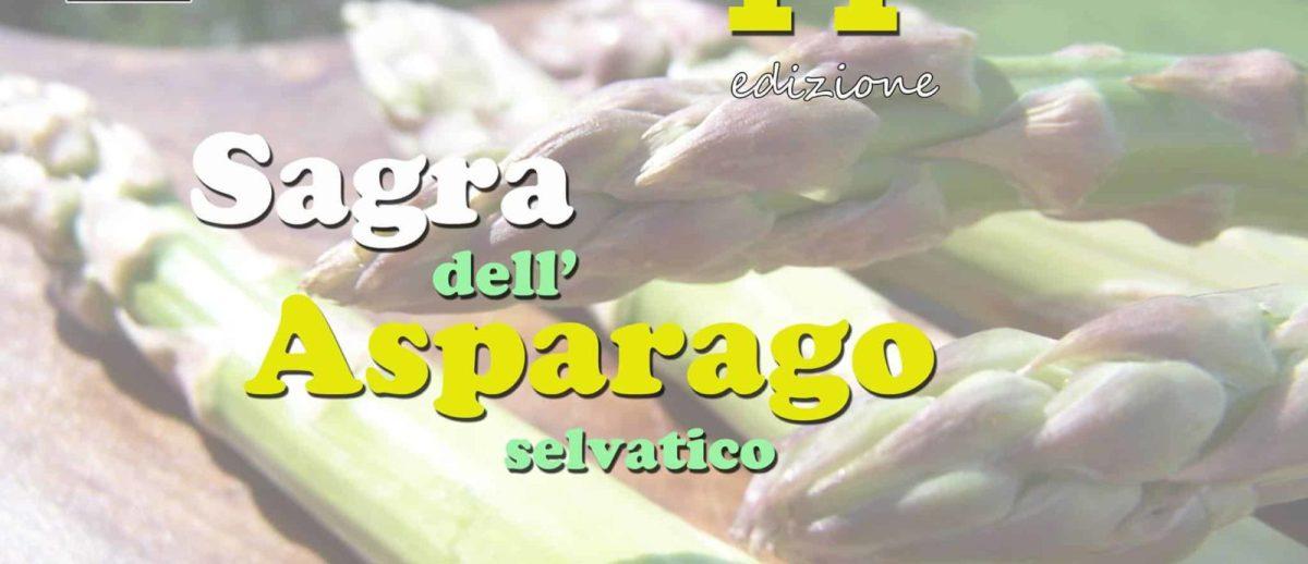 sagra asparago selvatico tissi sardegna sardinian life