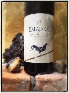 Kann denn Liebe zum Wein Sünde sein? Nicht, was den Balajana betrifft – Sardiniens erster Vermentino, der in Barrique reift. Einer wie keiner. Fotos © Sardinien Intim