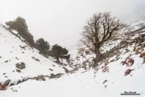 Verschneite Berge bei Desulo. Foto: Ivan Pedretti