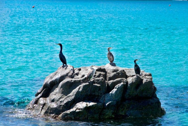 Das sonnenverwöhnte Küstenstädtchen lockt mit einer atemberaubenden Natur. Copyright Foto: Paolo Succu