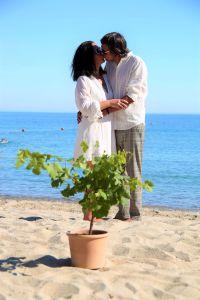 Hochzeitsbrauch Bäumchen pflanzen