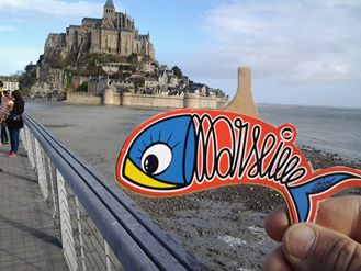 Sardine Bretagne