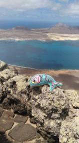 La Sardine of Marseille en Grèce