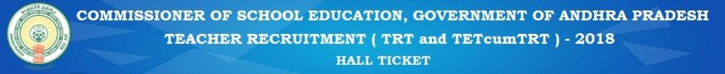 sarkariformadda, sarkariadda, sarkari form, Teachers School Education SGT School Assistant Language Pandit PET Music Craft Art & Drawing Residential School TGT PGT Principal PET Craft Art Music Admit card