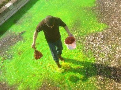 Recherche de fuite et investigation par mise en eau
