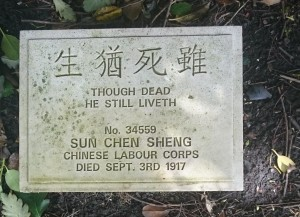 Chinese Labour Corps Graves Anfield Cemetery (5)