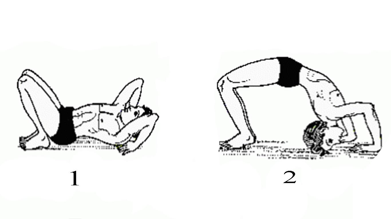 Chakrasana Wheel Pose Steps And Benefits