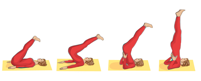 Image result for Sarvangasana Yoga