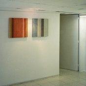 vista de la exposición 1º planta en la galería Milagros Delicado · Cádiz