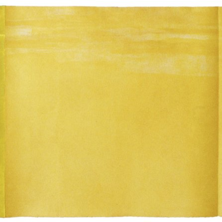 ancha y llana I |96 x 288 cm | técnicas aditivas - collagraph