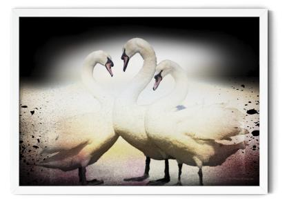 Wall art poster picture PT00: Just the Three of Us. Dark background