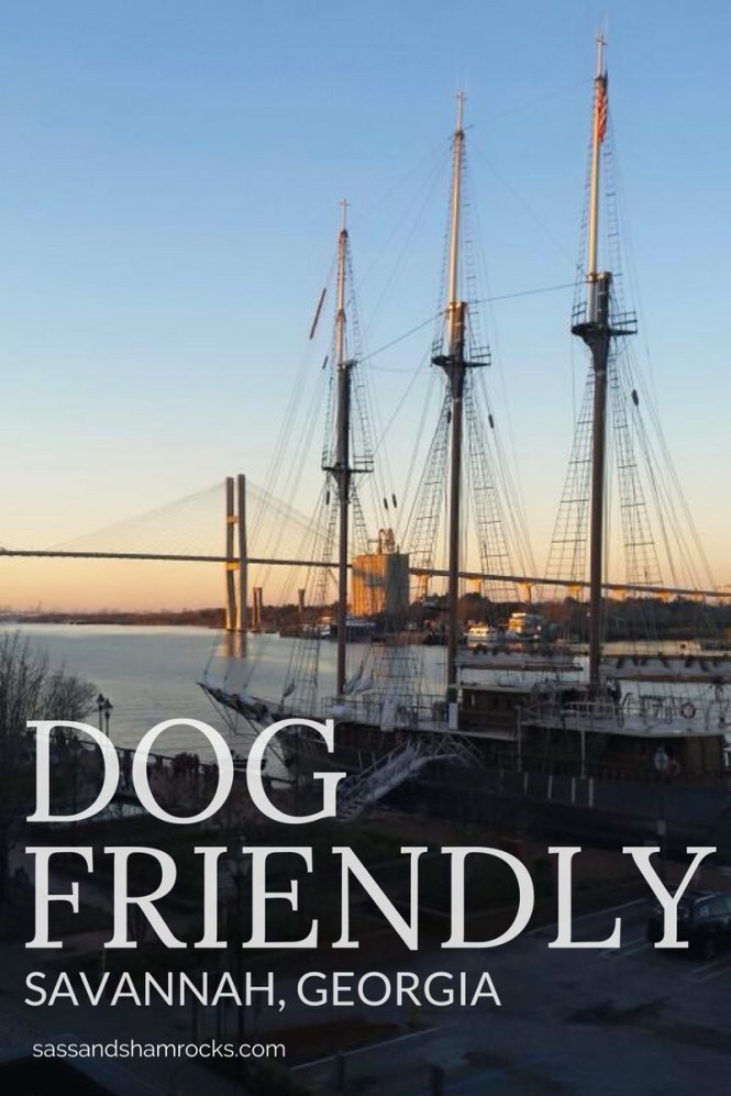 Dog Friendly Savannah