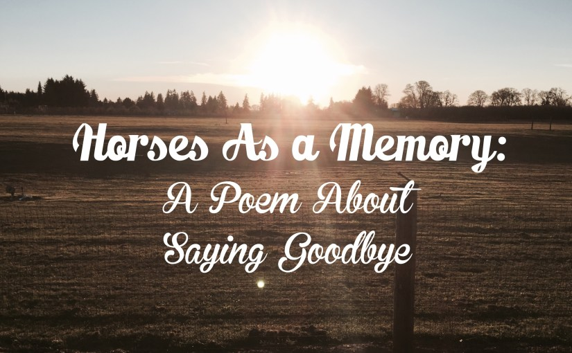 A Poem About Saying Goodbye To A Horse
