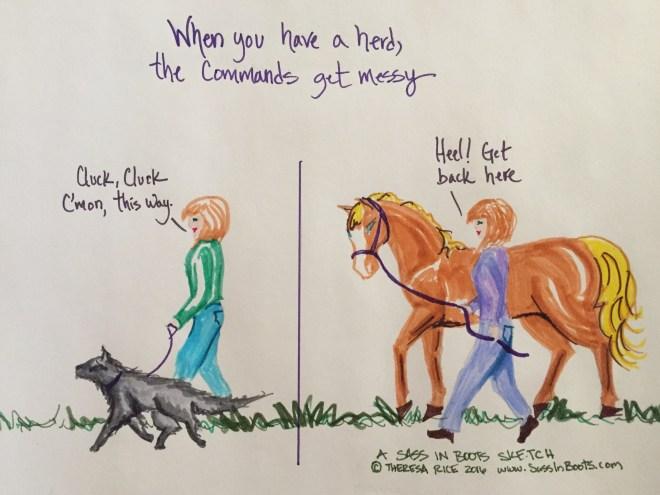 Horses who heel and dogs who whoa mixed signals