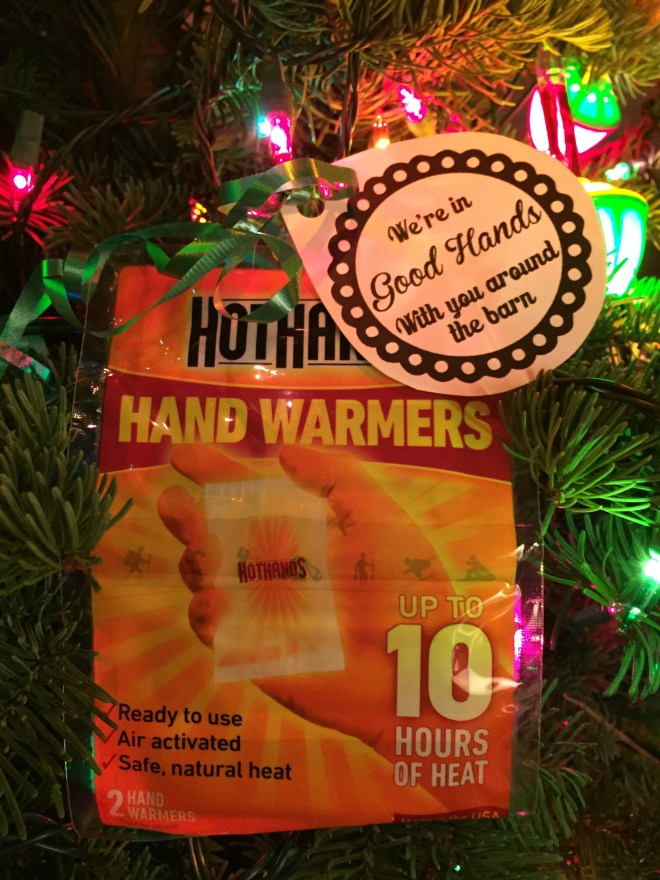 We're In Good Hands Hand Warmer Barn Gift