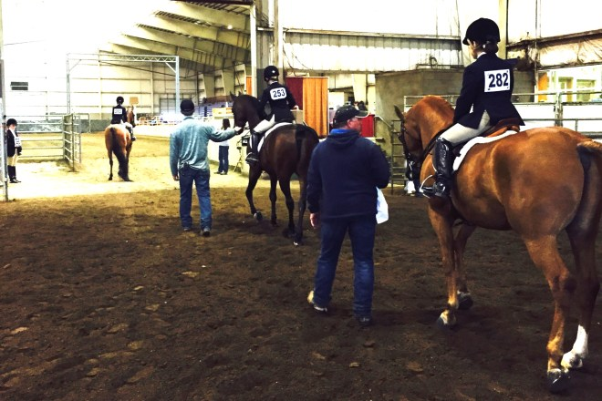 Learn From Your Horse Show Competitors