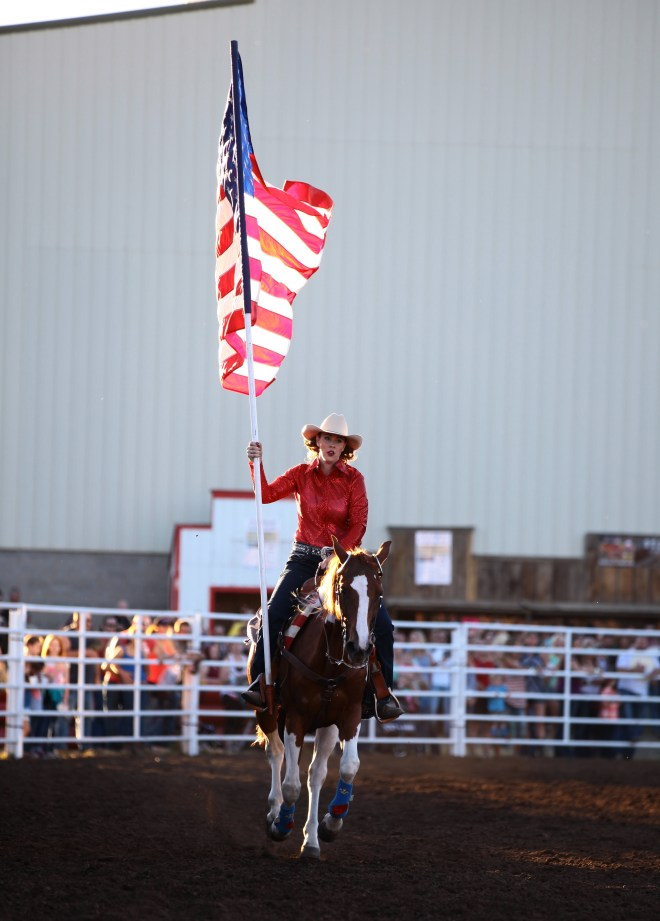 Rodeo Flag Horse