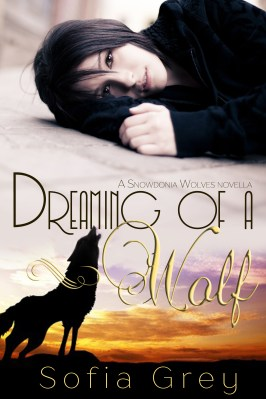Dreaming of a wolf_02