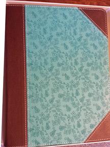 new-journaling-Bible