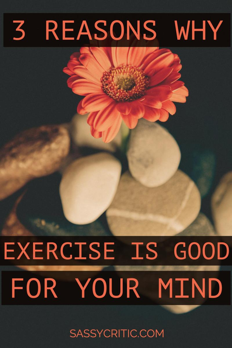 3 Reasons Why Exercise Is Also Good For Your Mind - SassyCritic.com