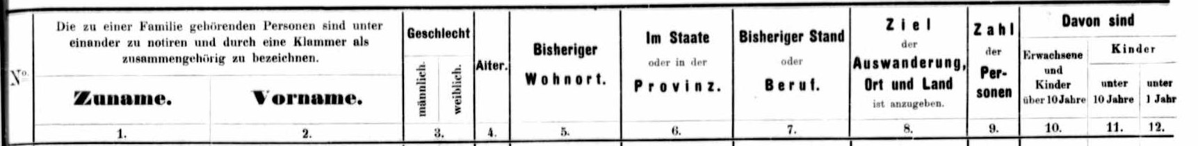 using hamburg passenger lists translation