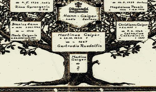 Sassy Jane Genealogy