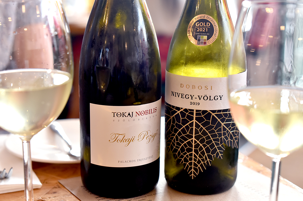 starter-wines-Turul-Project-team-Sated-Online