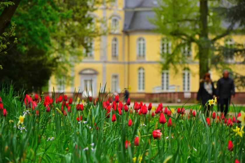 Palace Garden in Karlsruhe, Germany