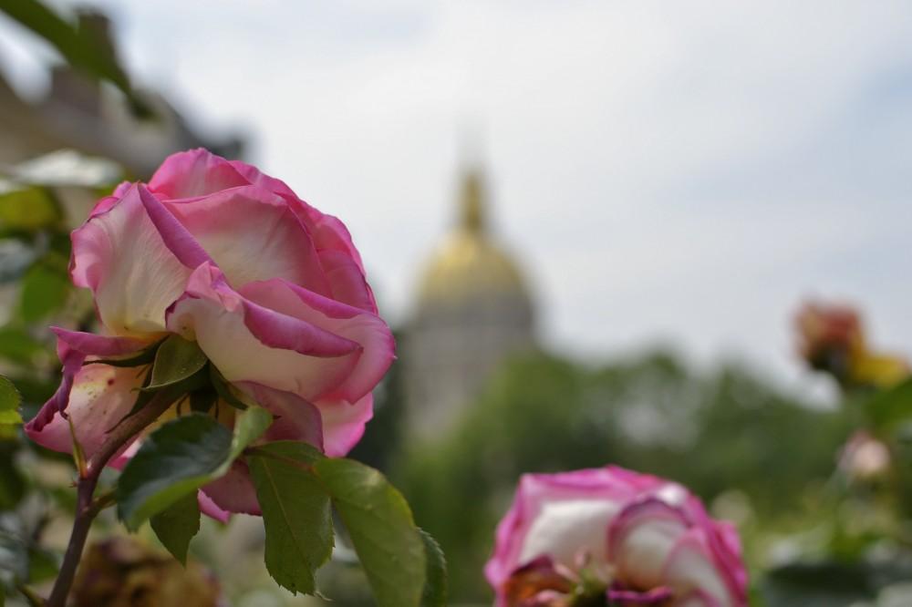 Photo Essay: Musée Rodin in Paris
