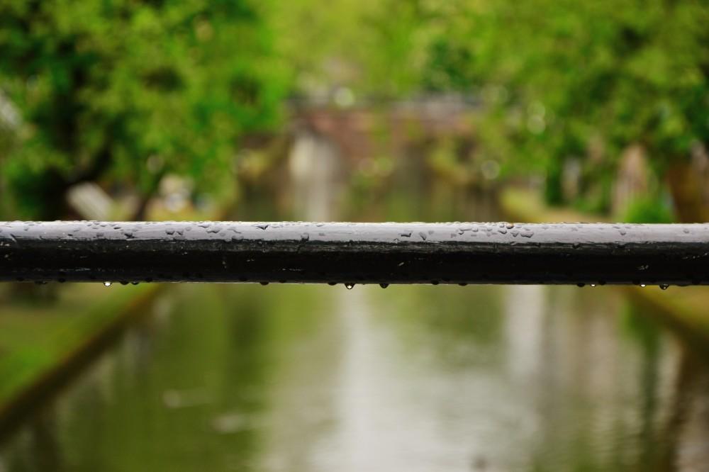 Raindrops in Utrecht, Holland