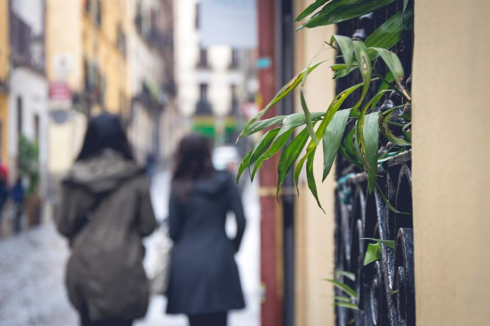 Strolling through Madrid, Spain