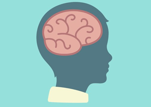 What Happens in a Child's Brain When They Learn to Empathize