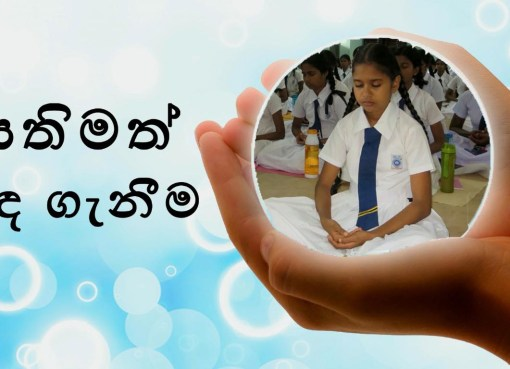 Sathimath Inda Ganeema / සතිමත් ඉඳ ගැනීම / Mindful Sitting