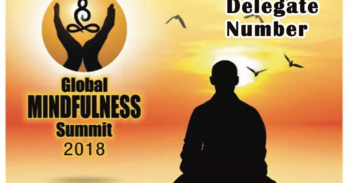 Global Mindfulness Summit - 2018