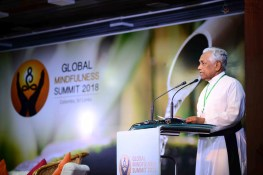 Global Mindfulness Summit 2018 - Day1 (72)